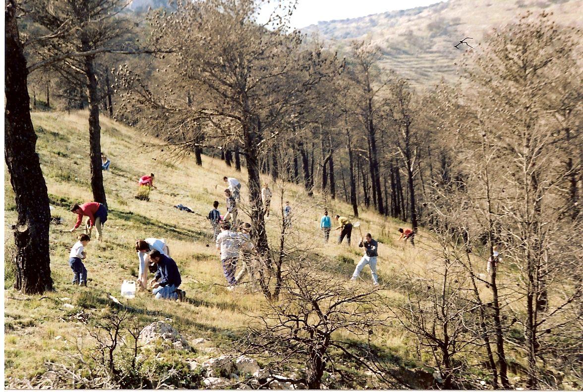 Enamorats del medi ambient. Replantació 2004