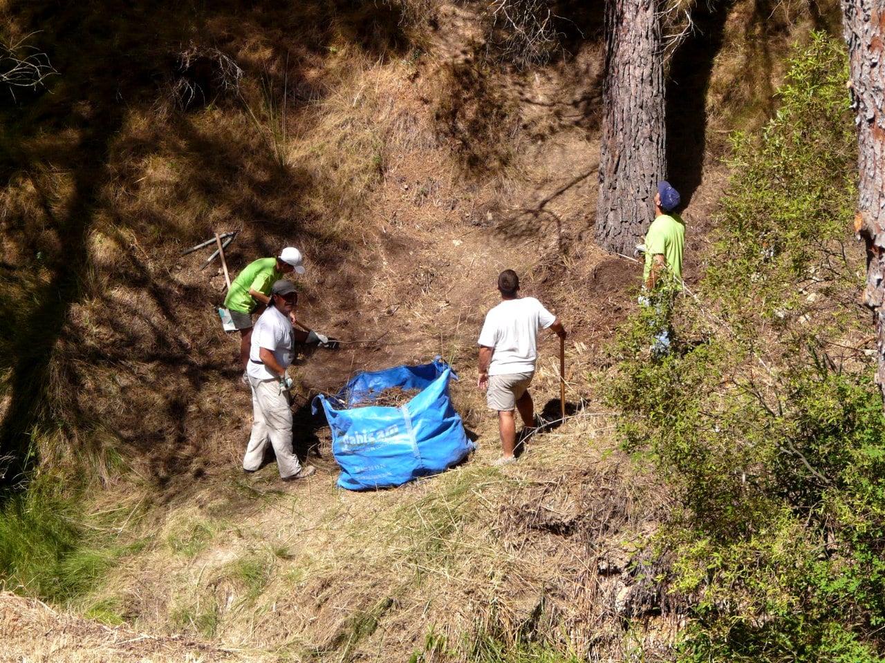 Brull Viu! El grup de voluntariat medi ambiental Diputació – CAM de l'estiu, vol participar en el Brull