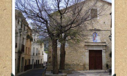 Oms de la Plaça de l'Església de La Torre de les Maçanes