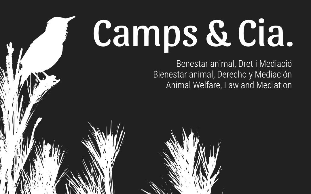 Camps & Cia.